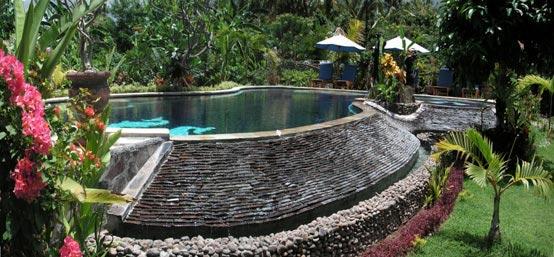 Sawah lovina bungalows i zwembad i lovina bali for Repurpose inground swimming pool